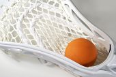 Lacrosse Head And Ball