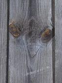 Textured Wooden Plank Like Alien Face 1