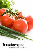 Fresh red tomatoes. Some lettuce and green onion. All on white background. Space for text isolated on white