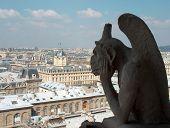 Wasserspeier über Paris