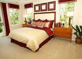 Elegant master bedroom in shades of red