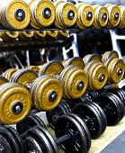 Barbells On A Rack In A Gym.