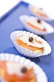 Mini Salmon Canapes