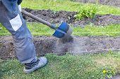 Gardener With Shovel Handles Flower Bed In The Garden, Working In The Garden? Gardener Working In Ga poster