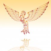 Vector of phoenix tattoo