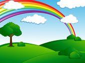 fresh green landscape with rainbow