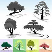 Novo!  Símbolos e ícones de árvore