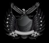 Spread Winged Eagle Upon The Shield Insignia
