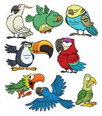 image of angry bird  - 8 cartoon tropical birds - JPG