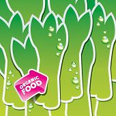 Background from asparagus with an arrow by organic food. Vector illustration.
