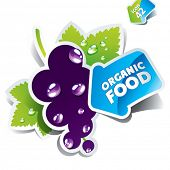 Icon currant with arrow by organic food on a white background. Vector illustration.