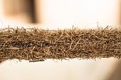 Coconut Coir. Grated Coconut Shell For The Production Of Mattresses. Texture, Natural Background. Co poster
