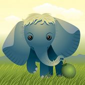Baby Animal collection: Elephant