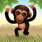 stock photo of baby animal  - Baby Animal collection: Monkey