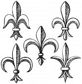 hand drawn fleur de lys design elements