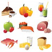 set of 9 highly detailed food icons