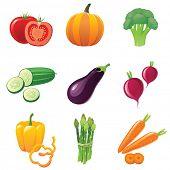 fresh shiny vegetables - icons set