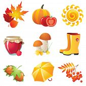 Bright autumn icons for your designs