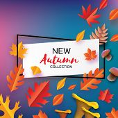 Autumn In Paper Cut Style. Origami Leaves, Mushroom. Cone. Hello Autumn. September. October. Rectang poster
