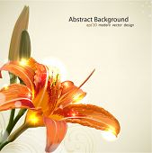 stock photo of lillies  - Lily flower abstract vector background - JPG