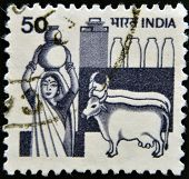 INDIA - CIRCA 1965: A stamp printed in India shows Woman with a jug of milk and cows circa 1965
