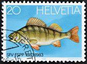 Um selo impresso na mostra Suíça um poleiro