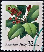 USA-CIRCA 1997:A stamp printed in USA shows image of the Ilex opaca American Holly circa 1997.