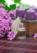 Lilac Parfume
