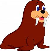 stock photo of blubber  - Vector illustration of Cute walrus cartoon isolated on white background - JPG