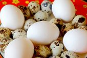 Red Dish With Hen And Quail Eggs