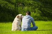 Cachorro com cachorro