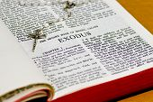 Rosary Bible Page - Exodus