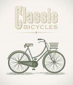Vintage illustration with a lady's classic bicycle. Editable layered vector.