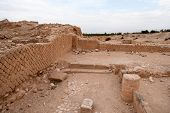 picture of jericho  - Excavations near Jericho city of ancient palace - JPG