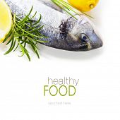 fresh dorada fish with thyme and lemon over white - food and drink border (with easy removable sampl