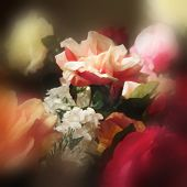 art floral watercolor background with red and pink roses in blur