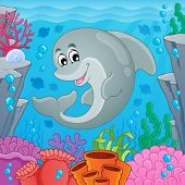 Image with dolphin theme 6 - eps10 vector illustration.