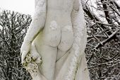 Feminine buttocks under the snow, the feminine nudity in winter
