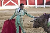 Spanish bullfighter Manuel Jesus El Cid dressed in a suit color pistachio nut and gold touching the