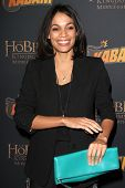 LOS ANGELES - DEC 11:  Rosario Dawson at the