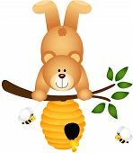 Teddy Bear Upside Down in Beehive