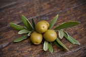 olives and olive leaves