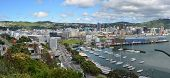 Wellington City Panorama In Spring, New Zealand