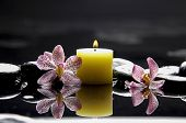 burning yellow candles with pink orchid on blacks with reflection