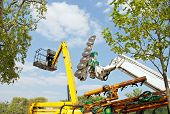 Machine to cut trees and nacelle, equipment for urban gardening