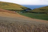 Lulworth Cove View Across Farmland