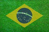 Brazil grass of Soccer championship 2014