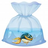 Illustration of a fish inside a plastic pouch on a white background