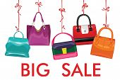 Multi-coloured  Fashion Women's Handbag Hang On Ribbon.big Sale
