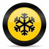 snow black yellow web icon